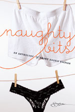 Naughty Bits by Megan Hart and Jodi Lynn Copeland