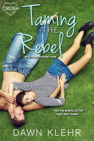 Taming the Rebel by Dawn Klehr